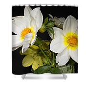Beautiful Autumn White Flowers Shower Curtain