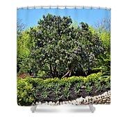 Beauty In The Garden Shower Curtain