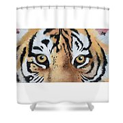 Bengal Eyes Shower Curtain