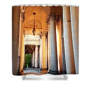Berlin Dome  Shower Curtain