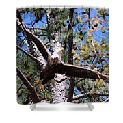 Berry College Eagle Mom Shower Curtain