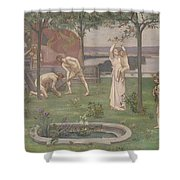 Between Art And Nature Shower Curtain