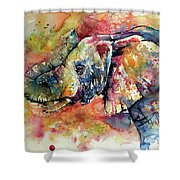 Big Colorful Elephant Shower Curtain