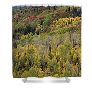 Big Cottonwood Canyon Fall Colors Shower Curtain