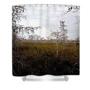 Big Cypress Shower Curtain