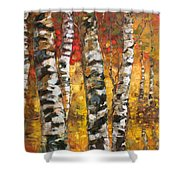 Birch Trees In Golden Fall Shower Curtain