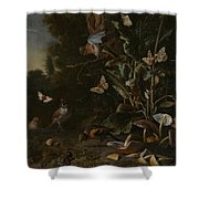 Birds Butterflies And A Frog Among Plants And Fungi Shower Curtain