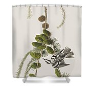 Black And White Creeper Shower Curtain