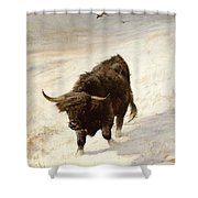 Black Beast Wanderer Shower Curtain by Joseph Denovan Adam