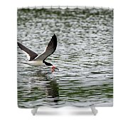 Black Skimmer Fishing Shower Curtain
