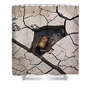 Blair Cracked Mud 1695 Shower Curtain
