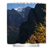 Blazing Larch Shower Curtain