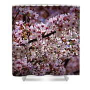 Blossoms Shower Curtain