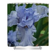 Blue Iris 2 Shower Curtain