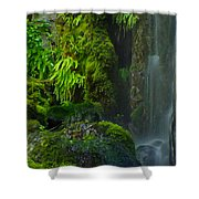 Bluff Falls Shower Curtain