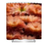 Blurred Seasonal Flowers With Yellow Background Shower Curtain