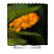 Blurred Seasonal Orchid Flowers With Dark Green Background Shower Curtain