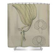 Bonnet Shower Curtain