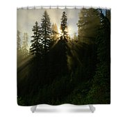 Breaking Dawn Shower Curtain
