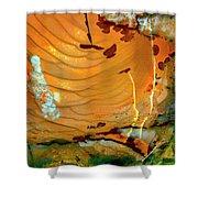 Brecciated Imperial Jasper Shower Curtain