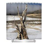 Bristlecone Fog And Sierra Nevada 1 Shower Curtain