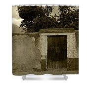 Brown Door In A White And Green Wall Shower Curtain