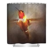 Brushed Rufous Shower Curtain