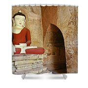 Buddha In A Niche Shower Curtain
