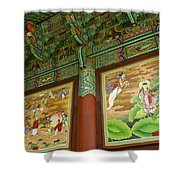 Buddhist Murals Shower Curtain