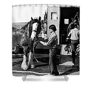 Budweiser Clydesdales Los Vaqueros Rodeo Parade Tucson Arizona 1984 Shower Curtain