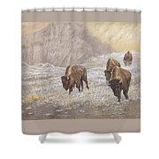 Buffalo Under The Alpenglow Shower Curtain