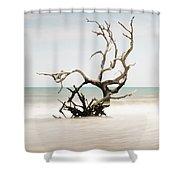 Bulls Island C-vi Shower Curtain