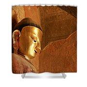 Burmese Buddha Shower Curtain