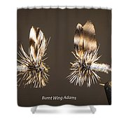 Burnt Wing Adams Shower Curtain