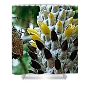 Butherfly Shower Curtain