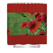 By Grace You Have Been Saved Shower Curtain