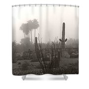 Cactus Fog Shower Curtain