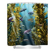 California Kelp Forest Shower Curtain