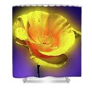 Californian Poppy. Shower Curtain