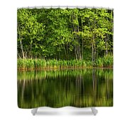 Calming Trees Shower Curtain