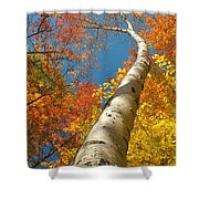 Canadian Autumn Shower Curtain