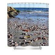 Cape Cod Beach Finds Shower Curtain