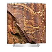 Capitol Reef 9497 Shower Curtain