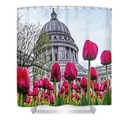 Capitol Tulips Shower Curtain