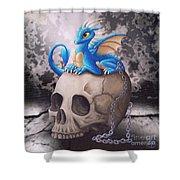 Captive Dragon On An Old Skull Shower Curtain