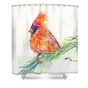 Cardinal On Branch Shower Curtain