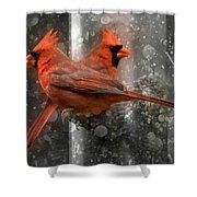 Cary Carolina Cardinals  Shower Curtain