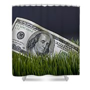 Cash In The Grass. Shower Curtain