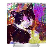 Cat Feline Pet Animal Cute  Shower Curtain