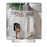 Cat Litter Box Furniture Shower Curtain
